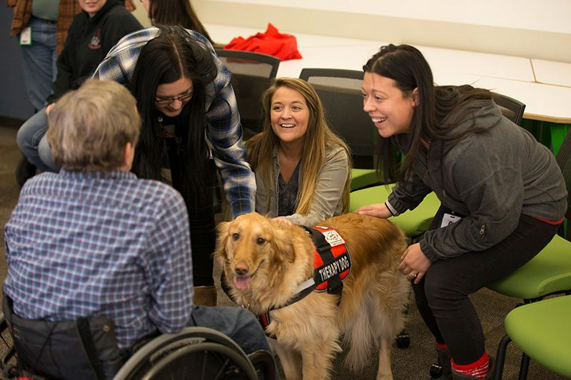 nelnet Associates enjoying therapy dogs